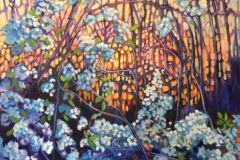 Anita-Williams-twilightpearblossoms