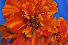 anitawilliams-orange marigold
