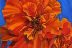 anitawilliams-orange marigold